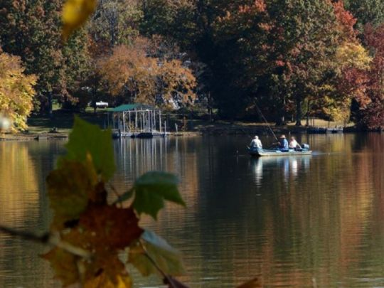 Bledsoe Creek - Fishing — Tennessee State Parks