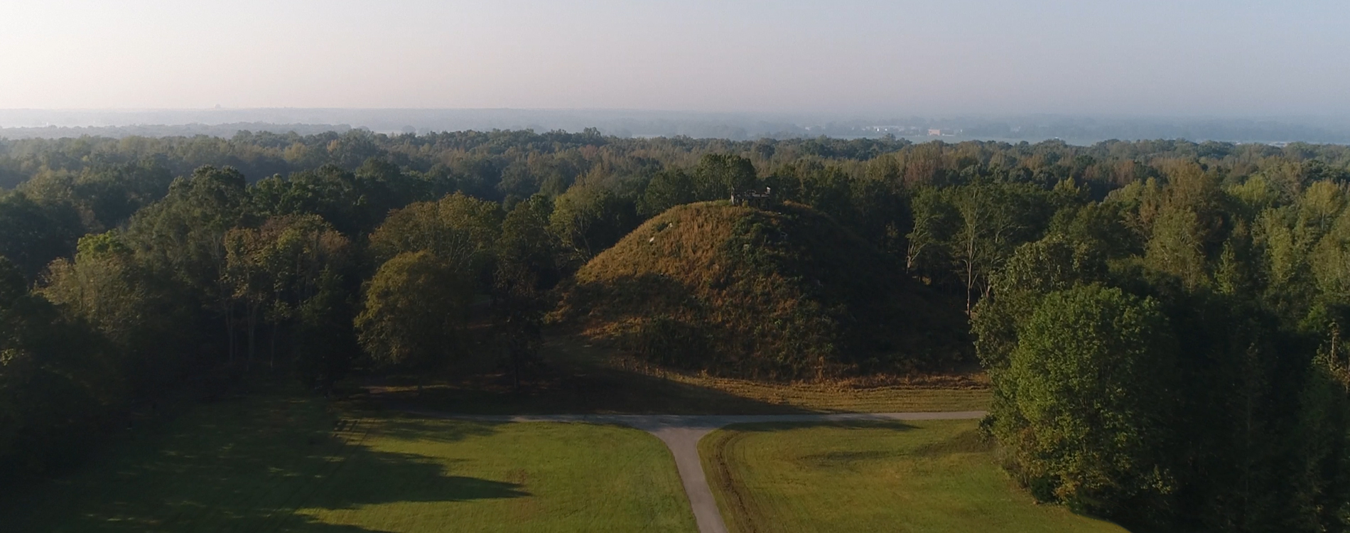 Sauls Mound at Pinson Mounds