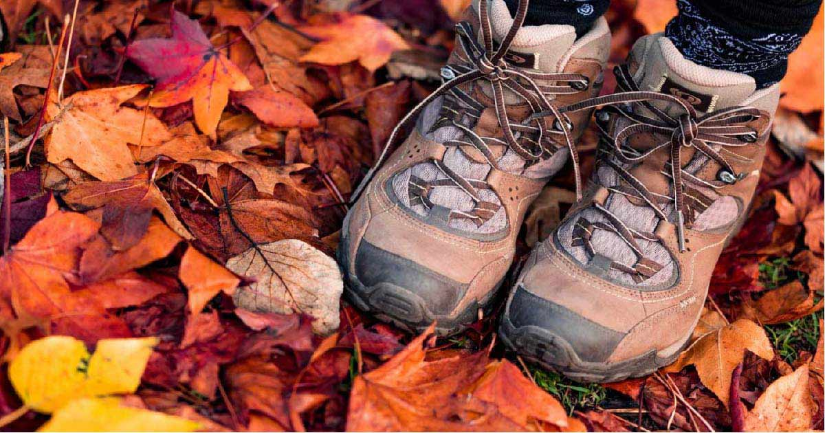 Guided Hikes During Fall at Tennessee State Parks