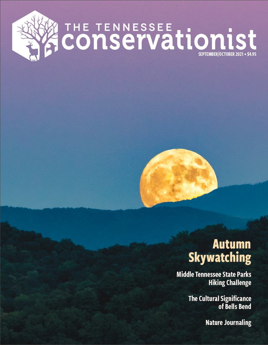 Jul/Aug 2021 issue cover