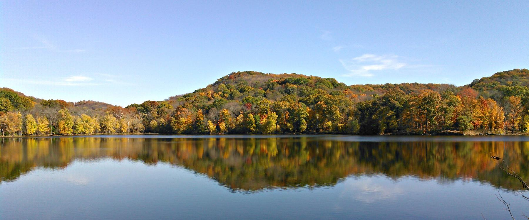Radnor-lake-11-8-14-sward