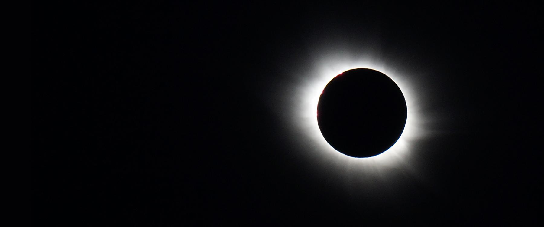 Total eclipse at the park-hero